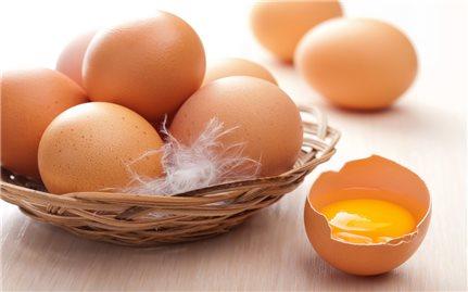 Bài thuốc từ trứng gà