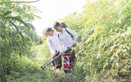Khó thoát nghèo vì thiếu đất sản xuất