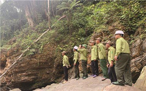 Bàn giao rừng từ doanh nghiệp sang Ban Quản lý rừng các huyện ở Lào Cai: Còn nhiều khó khăn