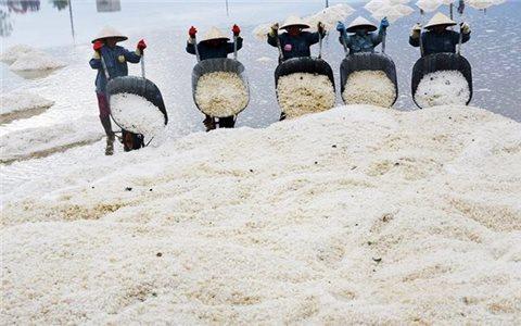 Khánh Hòa: Gắn kết hoạt động du lịch biển với du lịch trải nghiệm sản xuất và chế biến muối