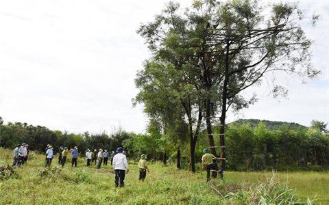 Hà Tĩnh: Ngăn chặn triệt để tình trạng đánh bắt, mua bán chim tự nhiên
