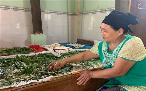 Người Thái ở Chư A Thai gắn bó với nghề nuôi tằm ăn lá mì