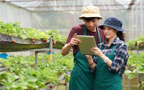 """""""Nông dân thông minh"""" - Dự án cải cách nền nông nghiệp Thái Lan"""