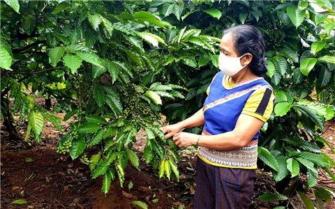 Puih Phyim - Nữ già làng giỏi dân vận
