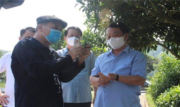 Bộ trưởng, Chủ nhiệm Hầu A Lềnh tham quan mô hình sản xuất chè an toàn của TP. Thái Nguyên