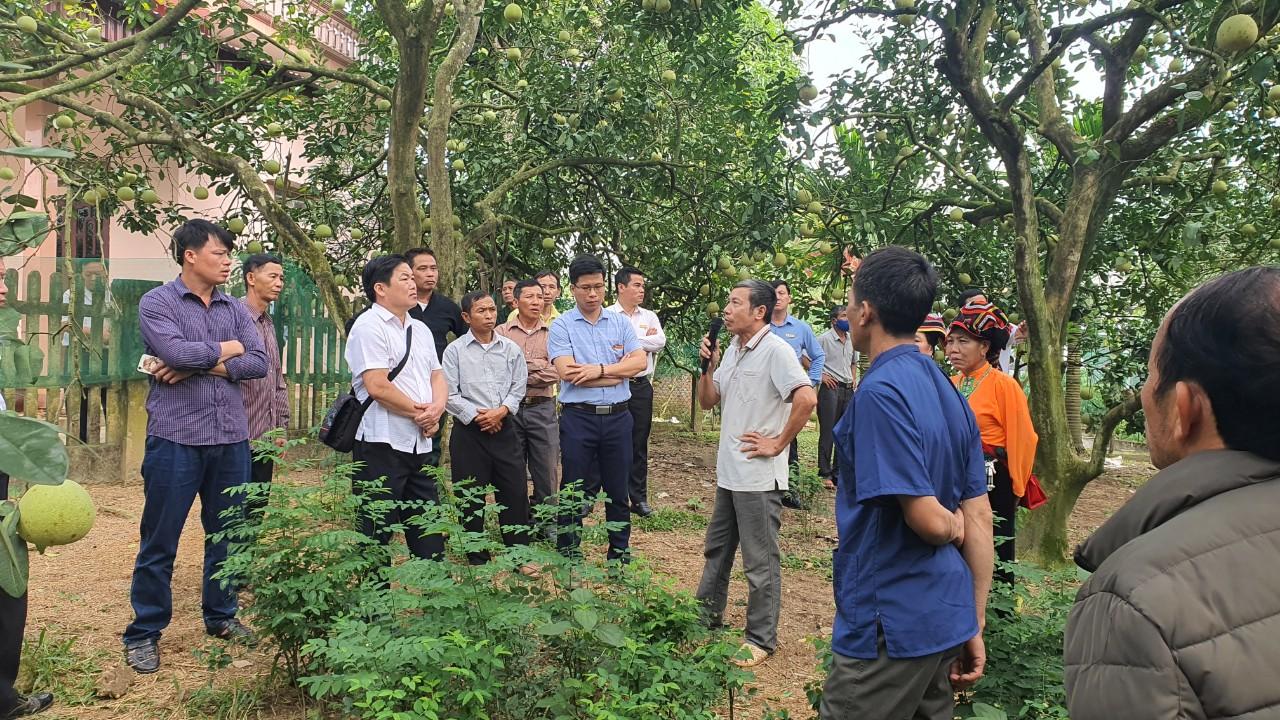 Đoàn đại biểu Người có uy tín Sơn La thăm quan mô hình phát triển sản xuất tại huyện Đoan Hùng, Phú Thọ.