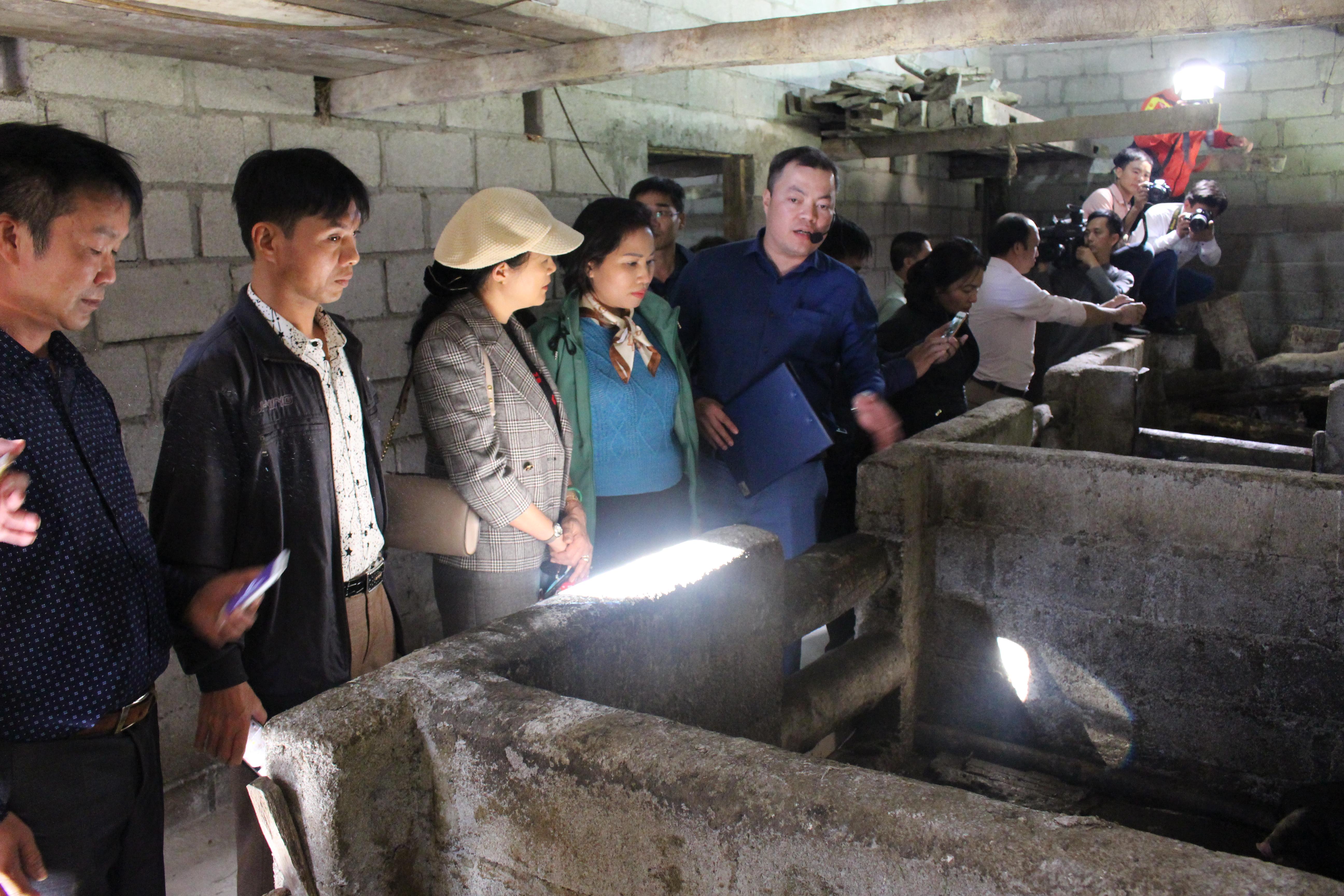 Đại biểu các tỉnh đến thăm quan mô hình chăn nuôi lợn sinh sản giống bản địa (lợn Lũng Pù) tại xã Cán Chu Phìn, huyện Mèo vạc.
