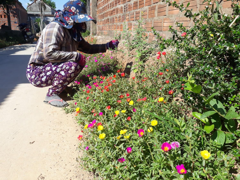 Nhờ dân vận tốt, người dân hưởng ứng tích cực việc xây dựng đường hoa nông thôn