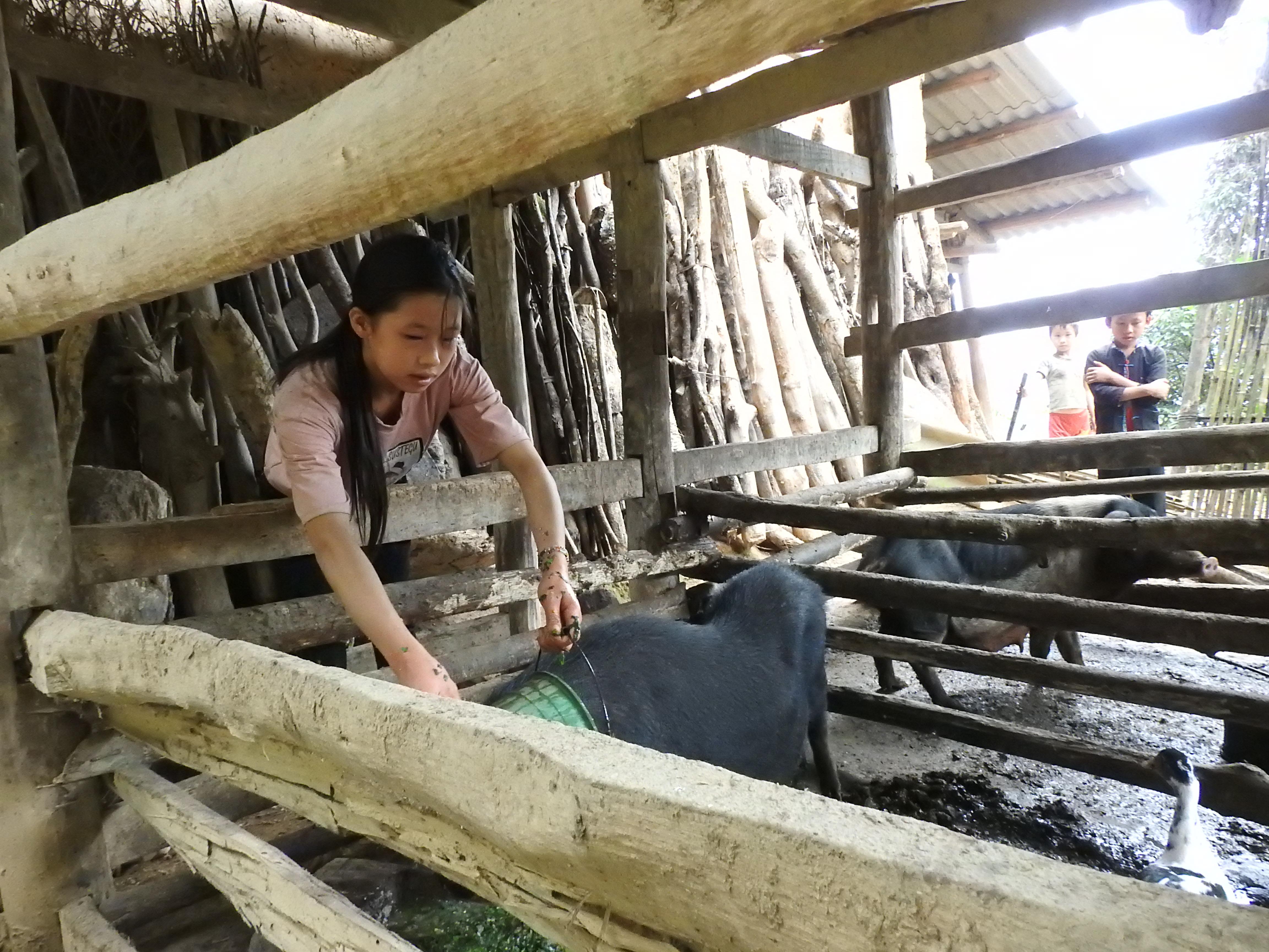Ngoài những buổi học trên lớp, em Lý Thị Nhật còn phải làm nhiều việc trong gia đình.