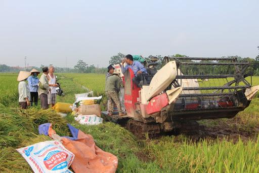 HTX nông nghiệp ở xã Vũ Di, huyện Vĩnh Tường đã chủ động ưa cơ giới hóa vào sản xuất, góp phần mang lại hiệu quả kinh tế cao.