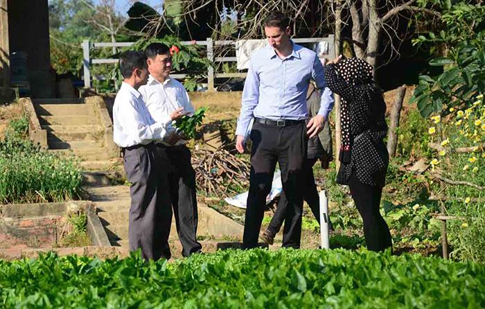 Mô hình sản xuất rau sạch của Công ty TNHH Safe Green trên địa bàn tỉnh Điện Biên