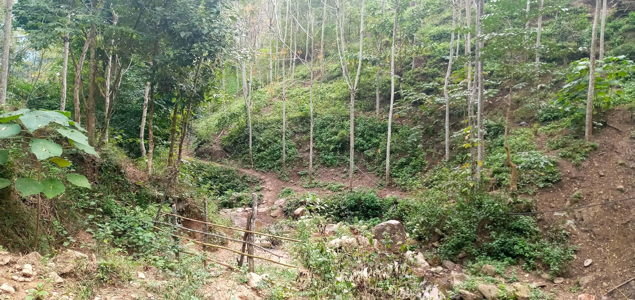 Để có nước sinh hoạt, người dân ở bản Suối Phái, phải dùng nước kéo từ các khe suối trên núi về sử dụng.