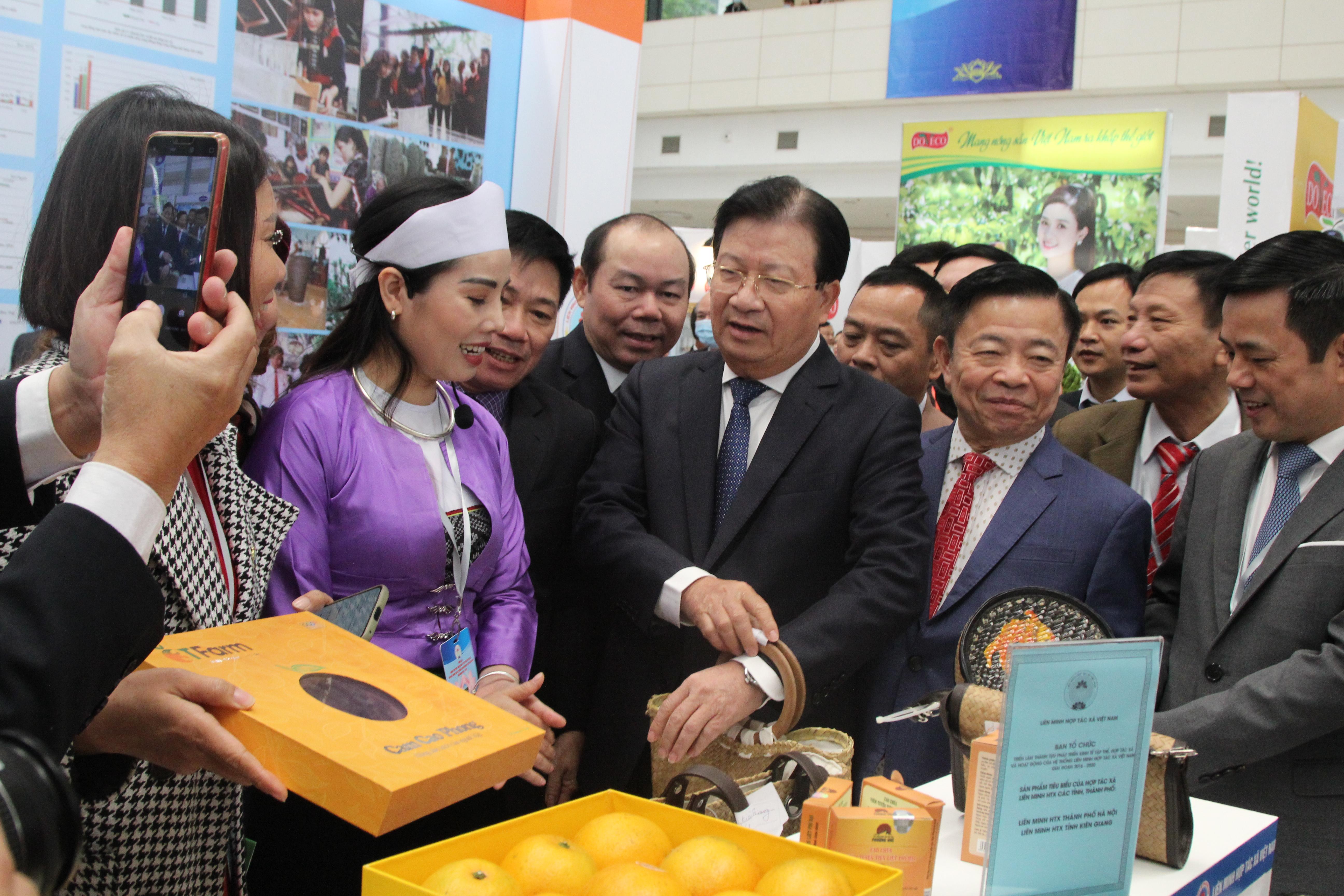 Phó Thủ tướng Trịnh Đình Dũng và các đại biểu thăm gian hàng triển lãm
