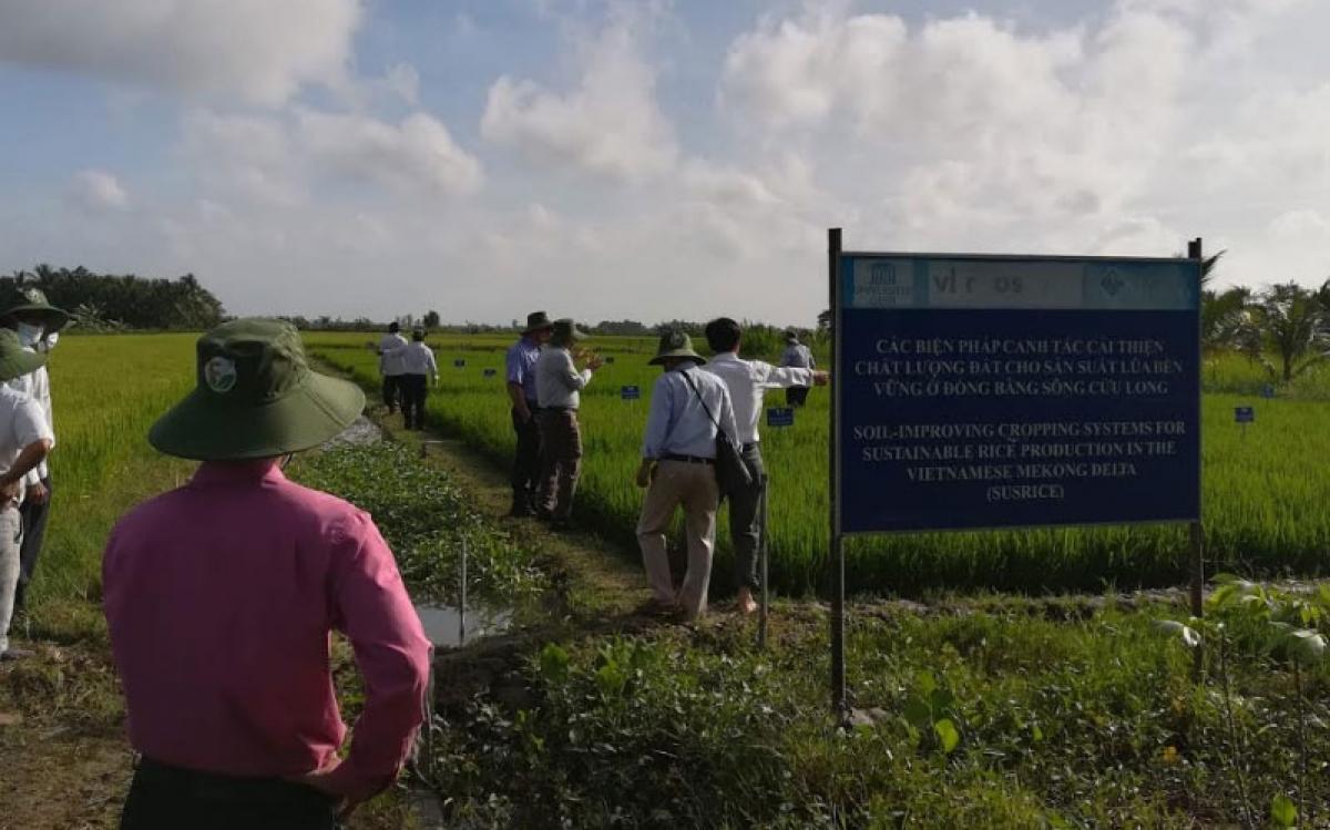 Đại biểu tham quan cơ sở nghiên cứu thí điểm tại thôn Mỹ Lợi và thôn Thiện Mỹ.
