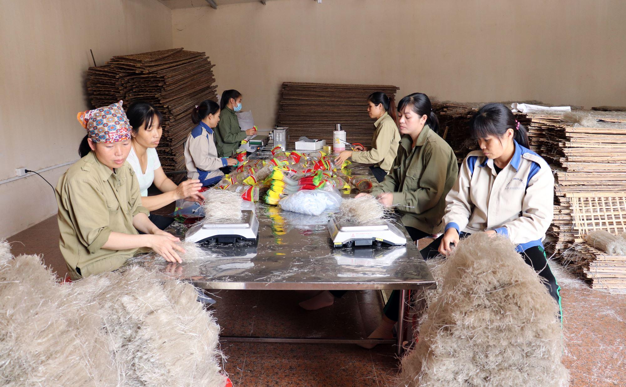 Miến dong Bình Liêu là một trong những sản phẩm OCOP giúp đồng vùng DTTS, miền núi thoát nghèo.