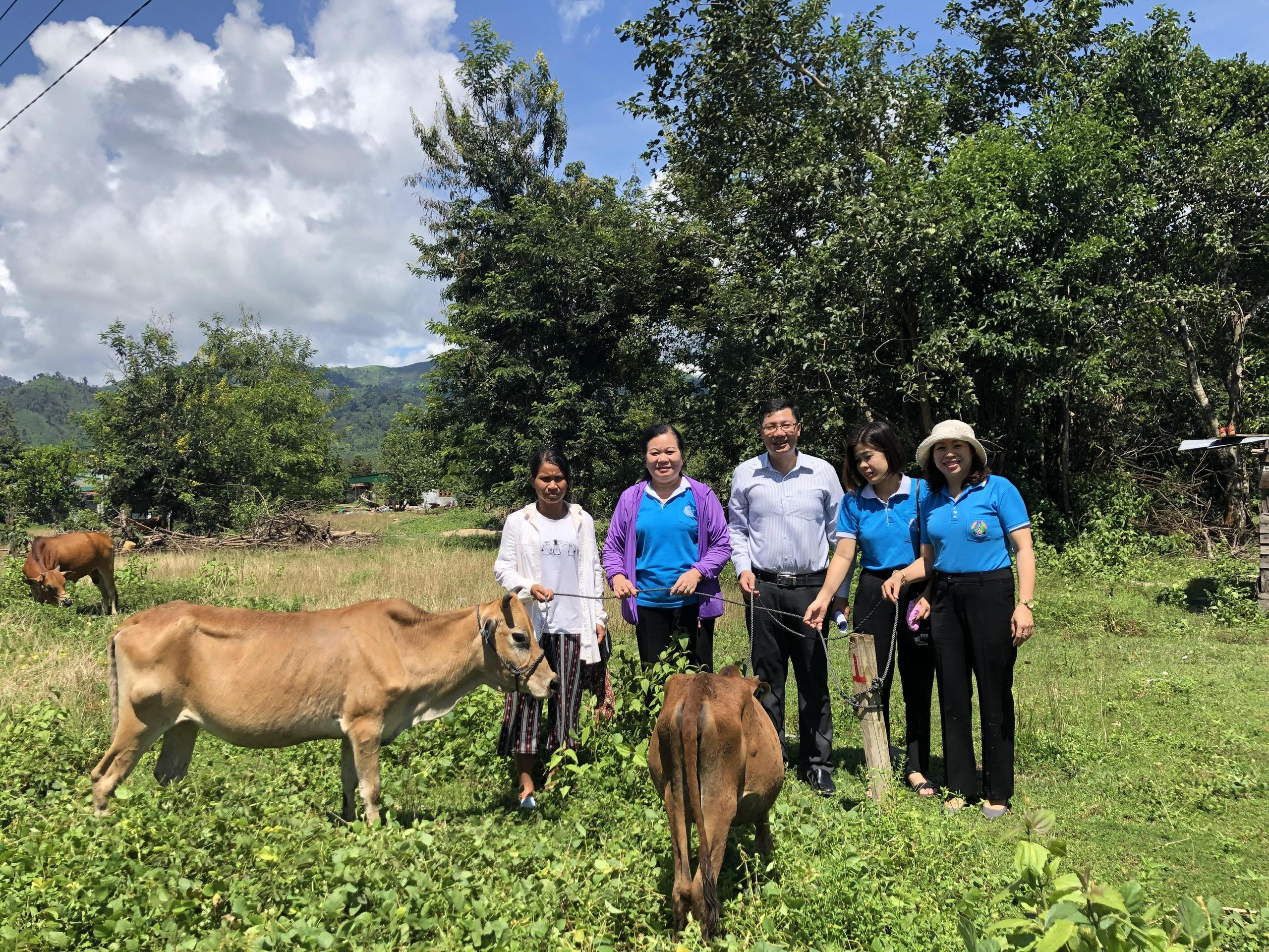 Ra mắt Tổ hợp tác chăn nuôi bò sinh sản của phụ nữ dân tộc Rơ Măm ở Làng Le, xã Mô Rai, huyện Sa Thầy (Tháng 9/2020)