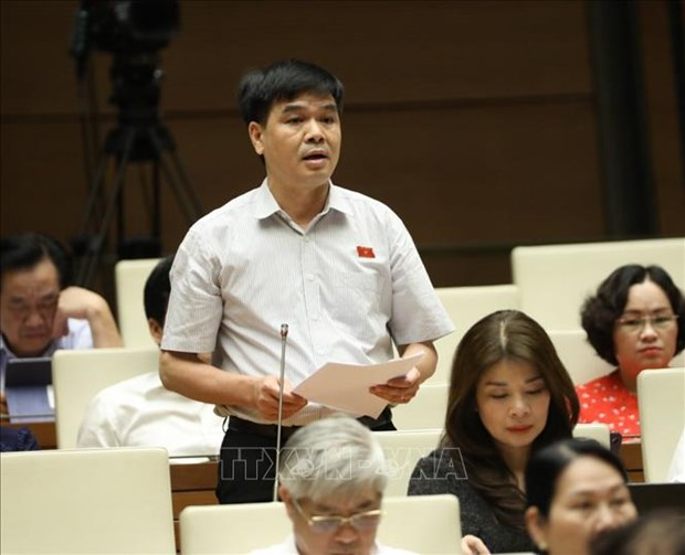 Đại biểu Quốc hội tỉnh Lai Châu Nguyễn Hữu Toàn phát biểu. Ảnh: Văn Điệp - TTXVN