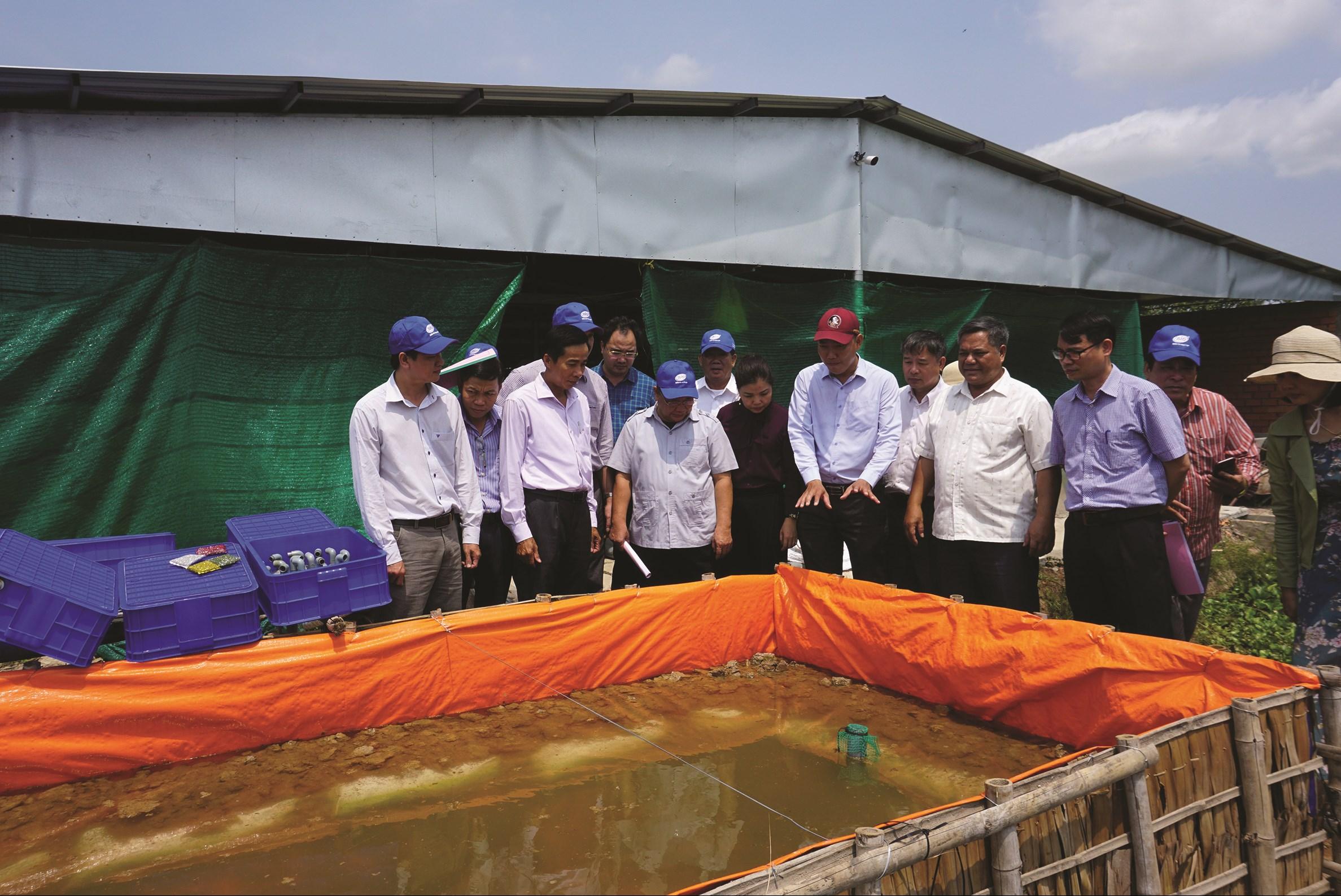 Trung ương Hội Nông dân thăm quan các mô hình chuyển đổi sản xuất của Hợp tác xã Tân Bình, huyện Bình Tân
