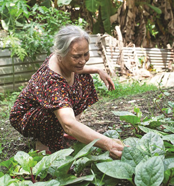 Bà Mai Thị Tuyết với cuộc sống thường ngày.