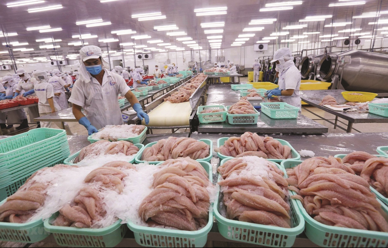 Sản xuất, chế biến và xuất khẩu thủy sản đang hồi phục