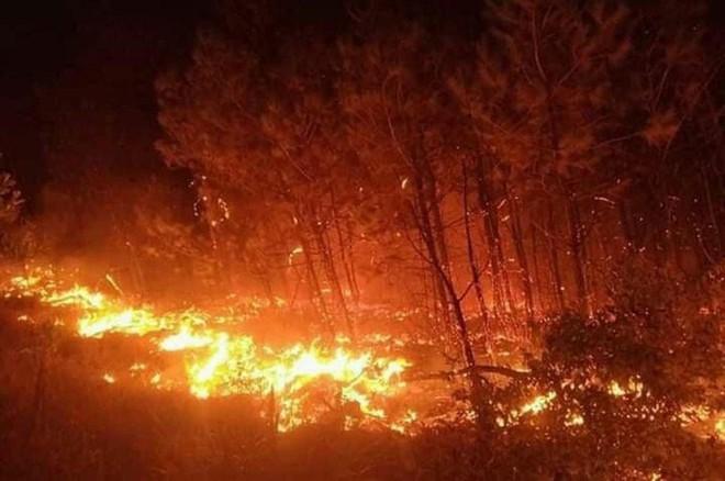 Cháy khu rừng thông ở xã Diễn An đêm 29.6