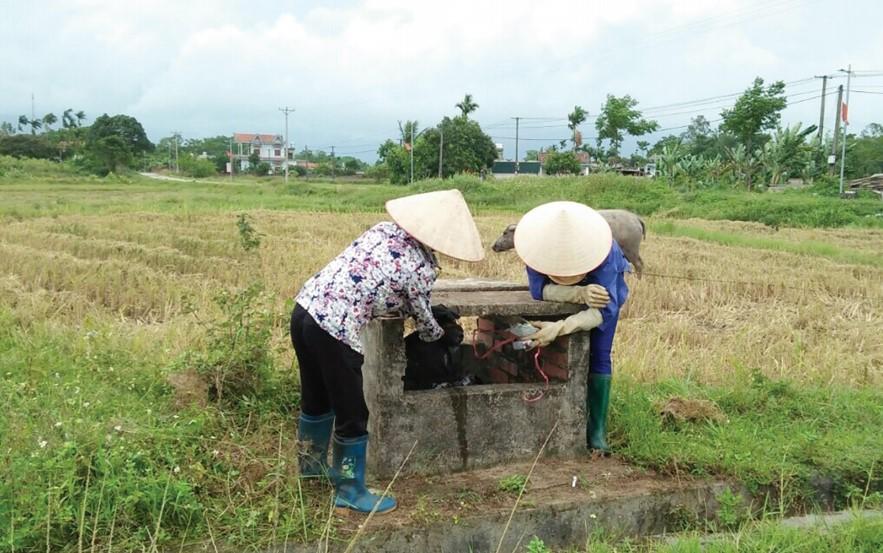 Nông dân Quảng Ngãi tích cực thu gom, xử lý rác thải trên đồng ruộng, bảo vệ môi trường.