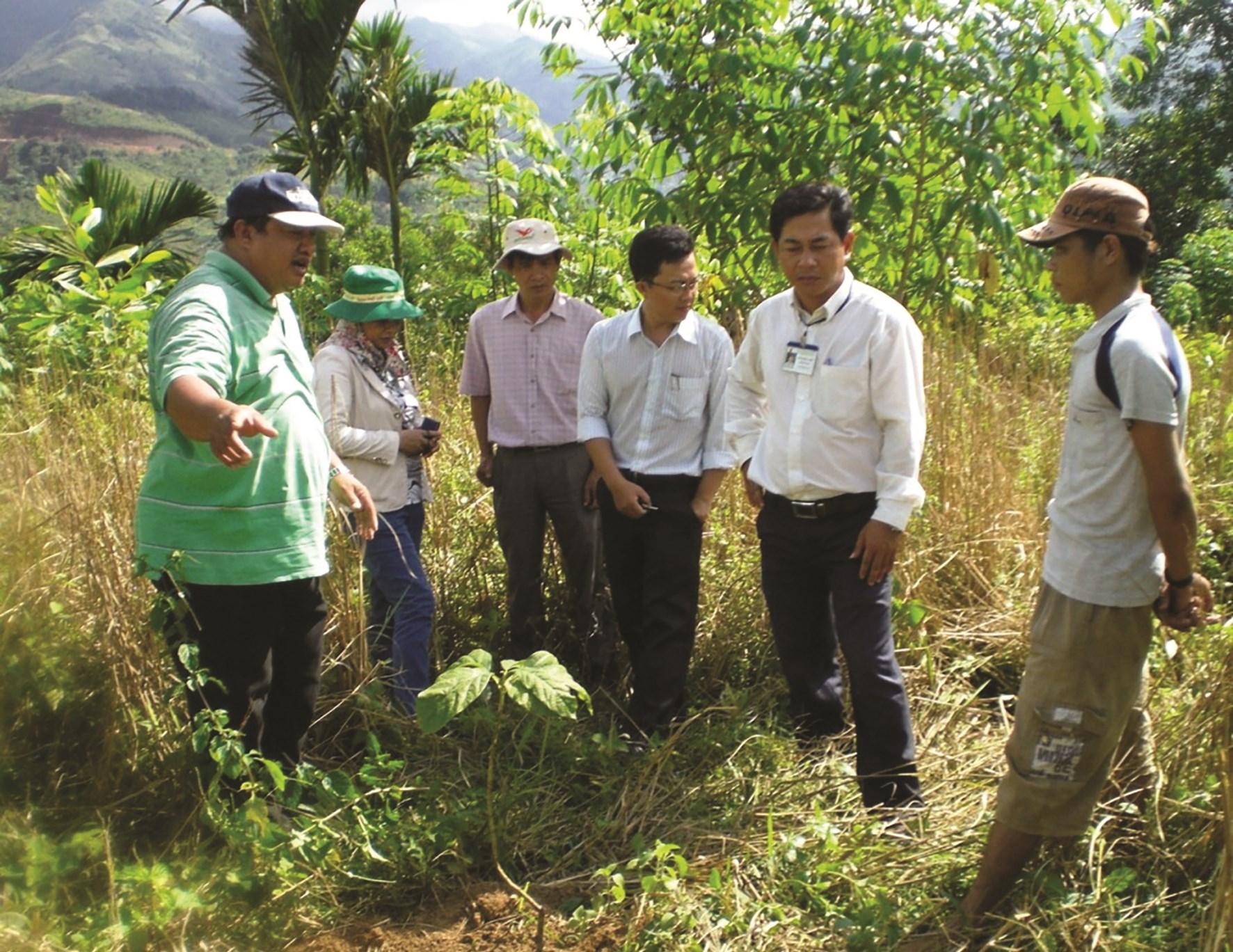 Các ngành chức năng tỉnh Quảng Ngãi tuyên truyền cho người dân về lợi ích của trồng rừng gỗ lớn.