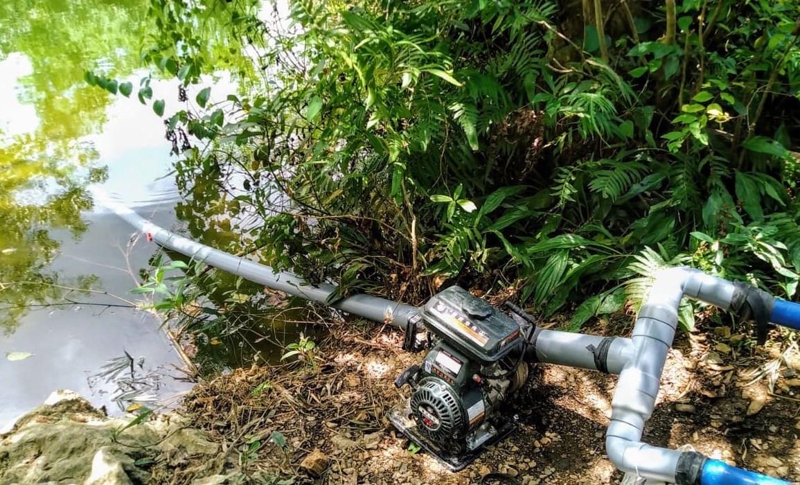 Gia đình anh Cao Long thôn Tân Tiến dùng máy bơm nước từ khe suối về cứu lúa.