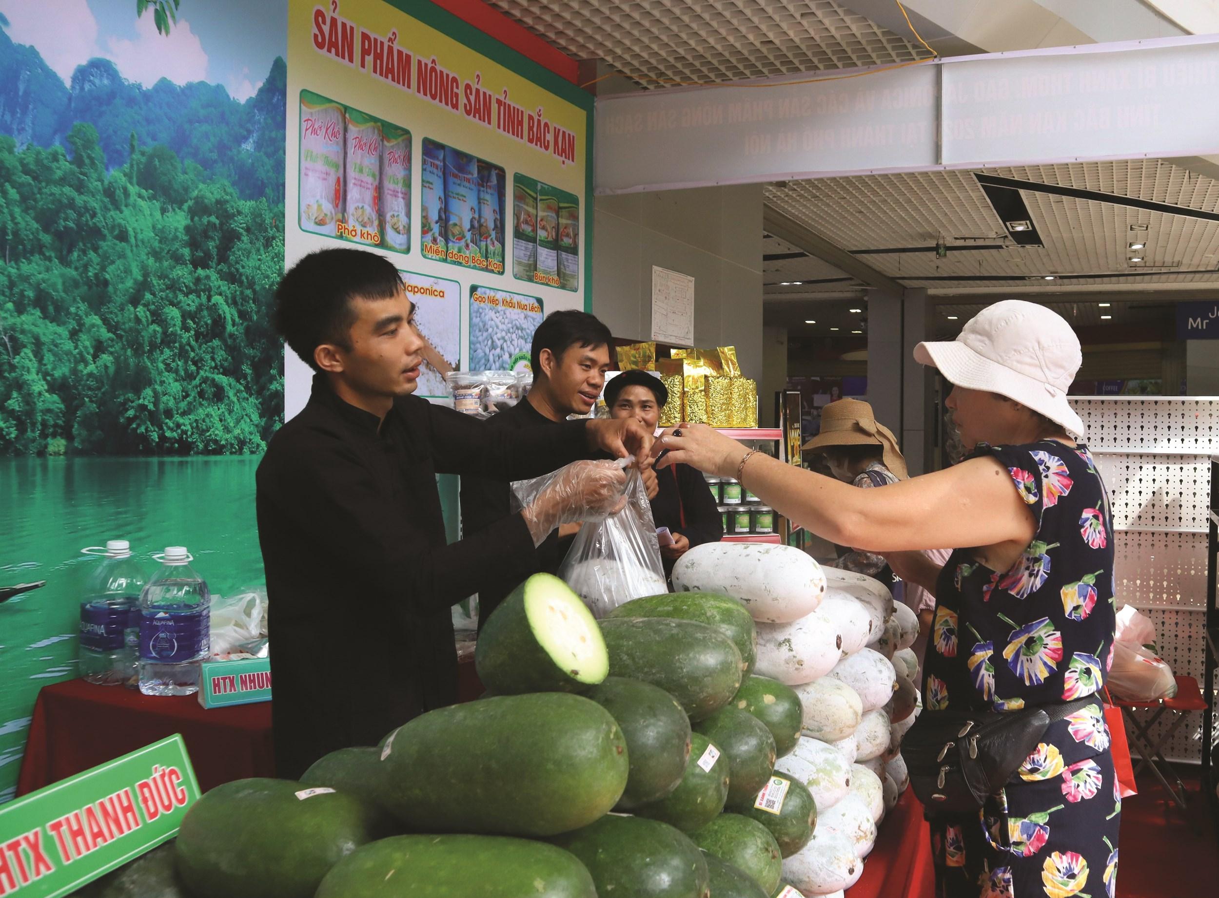 Sản phẩm bí xanh thơm của huyện Ba Bể được giới thiệu, bày bán tại siêu thị ở Hà Nội.