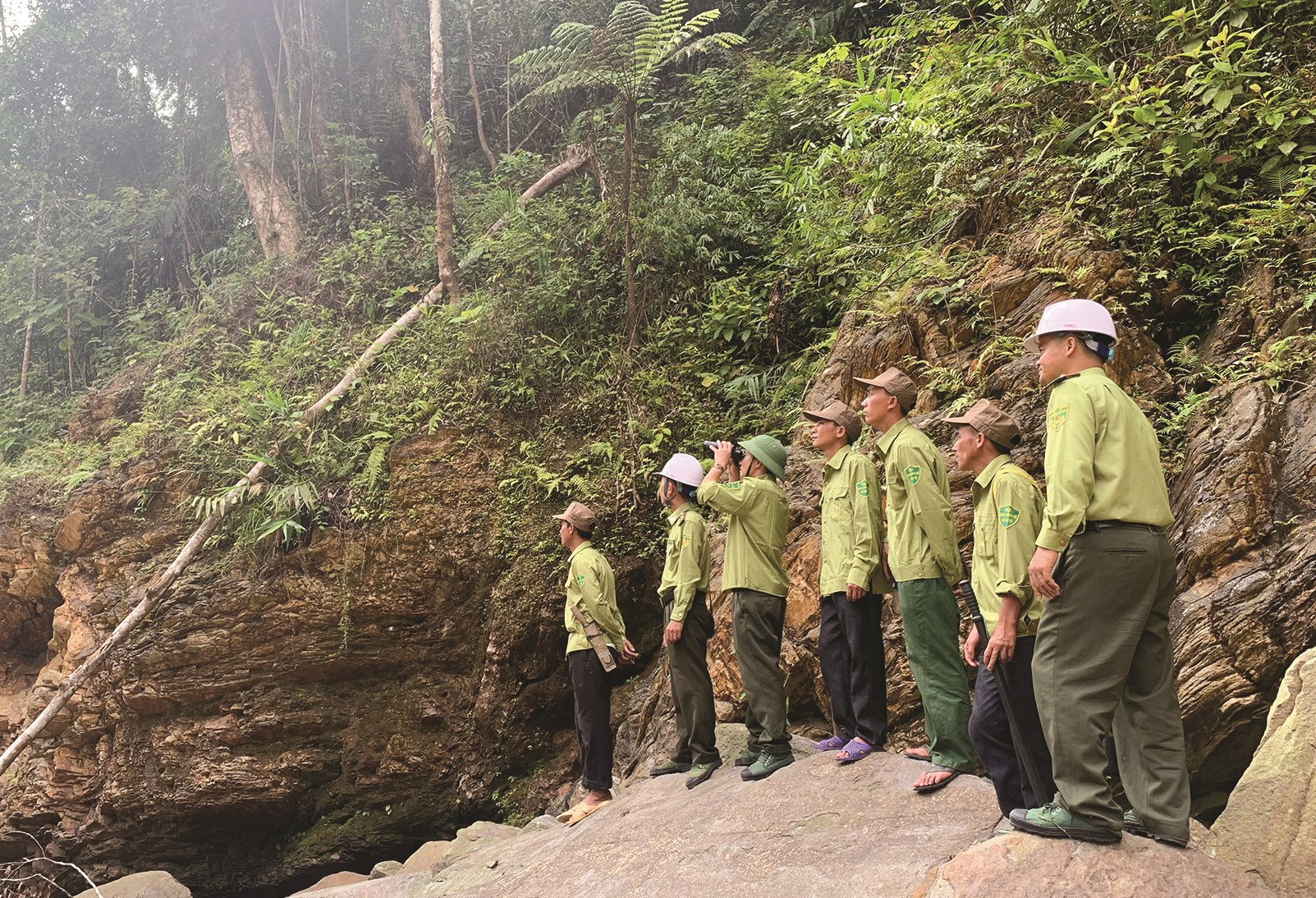 Việc tiếp quản những diện tích rừng do doanh nghiệp quản lý giao về cho địa phương hiện đang gặp nhiều khó khăn do lực lượng bảo vệ rừng còn mỏng
