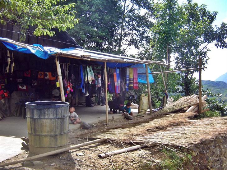 Đồng bào Mông chặt cây lanh về nhà, bó thành từng bó, phơi ngoài trời hoặc xếp ở hiên nhà cho đến khi thân cây khô hoàn toàn.