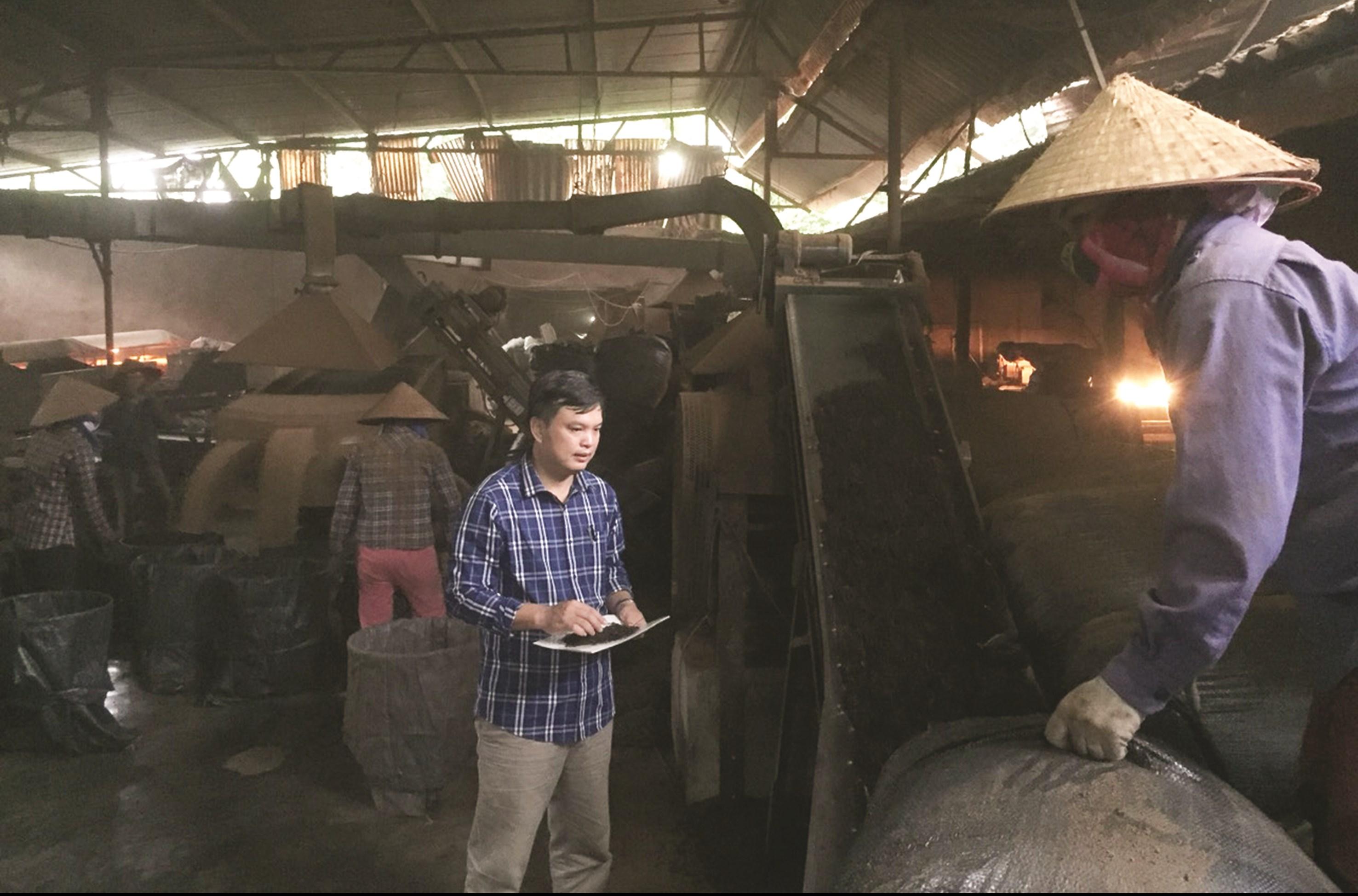 Giám đốc Liễu Ngọc Nam kiểm tra sản phẩm chè tại xưởng sản xuất của Công ty.