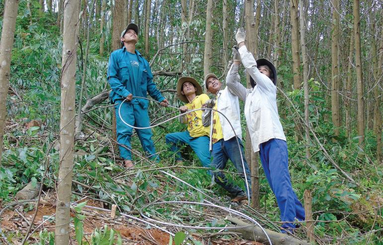 Mặc dù gặp nhiều khó khăn nhưng những công nhân ngành Điện Quảng Ngãi vẫn nỗ lực để đưa điện về phục vụ đồng bào vùng sâu, vùng xa