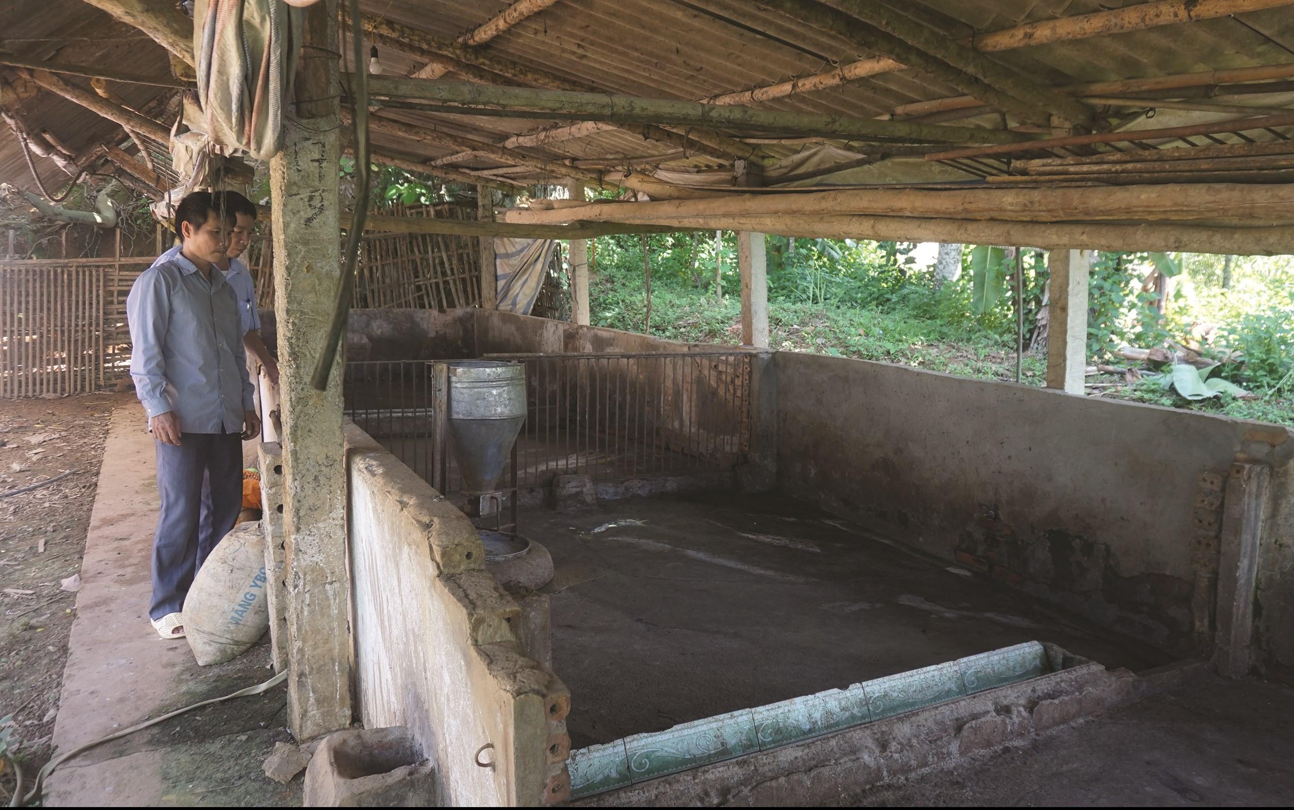 Nhiều hộ gia đình đầu tư chuồng trại khang trang nhưng hiện cũng đành phải bỏ không do dịch tả lợn châu Phi.