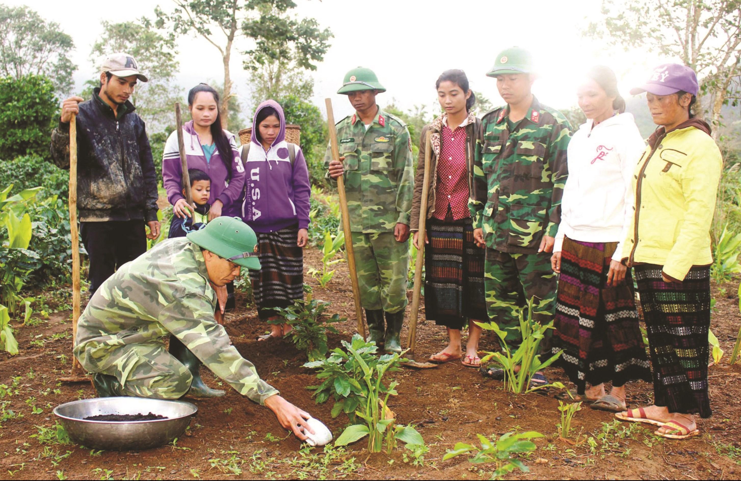 Bà con Bru - Vân Kiều huyện Đakrông học kỹ thuật trồng cây cà phê. (Ảnh tư liệu)