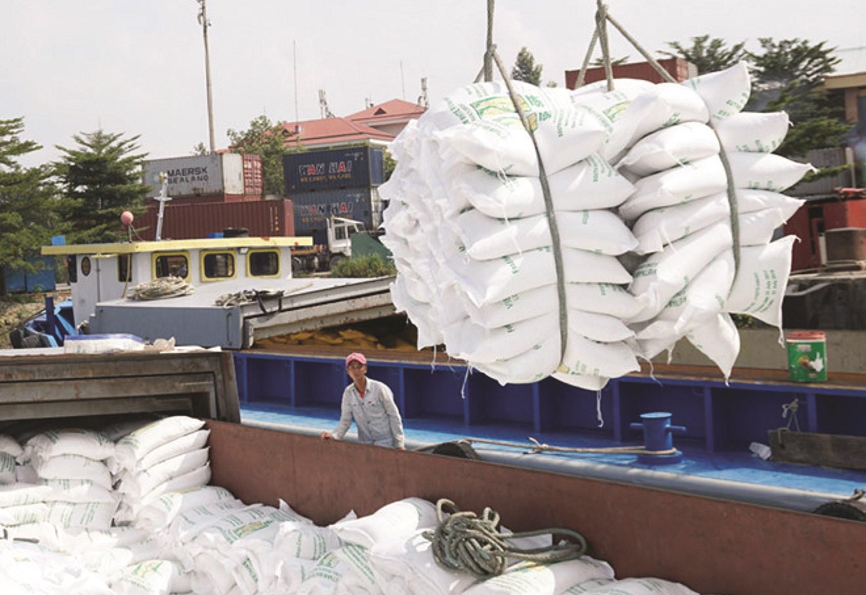 Tăng lượng gạo thơm xuất khẩu sang EU là cơ hội để khẳng định hạt gạo Việt