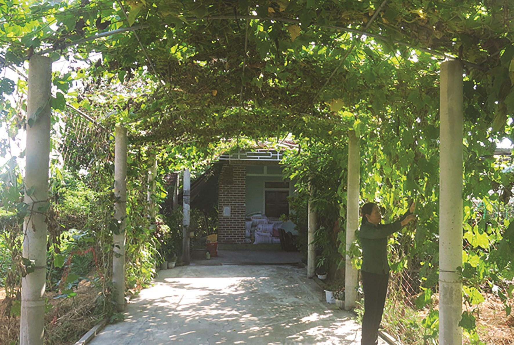 Ở huyện Lệ Thủy đã xuất hiện ngày càng nhiều những khu vườn kiểu mẫu
