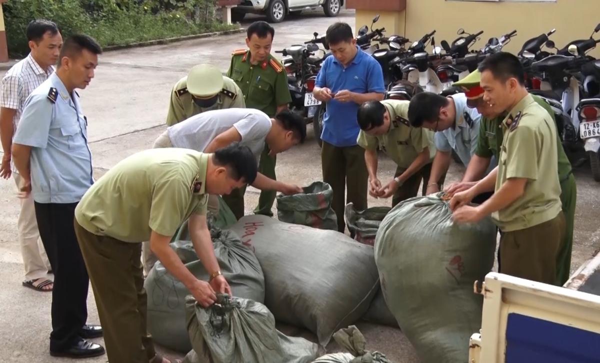 Lực lượng chức năng kiểm đếm số lượng nguyên liệu thuốc bắc bị thu giữ