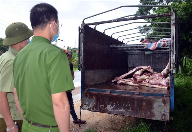 Số thịt lợn mắc bệnh bị bắt giữ. Ảnh TTXVN phát
