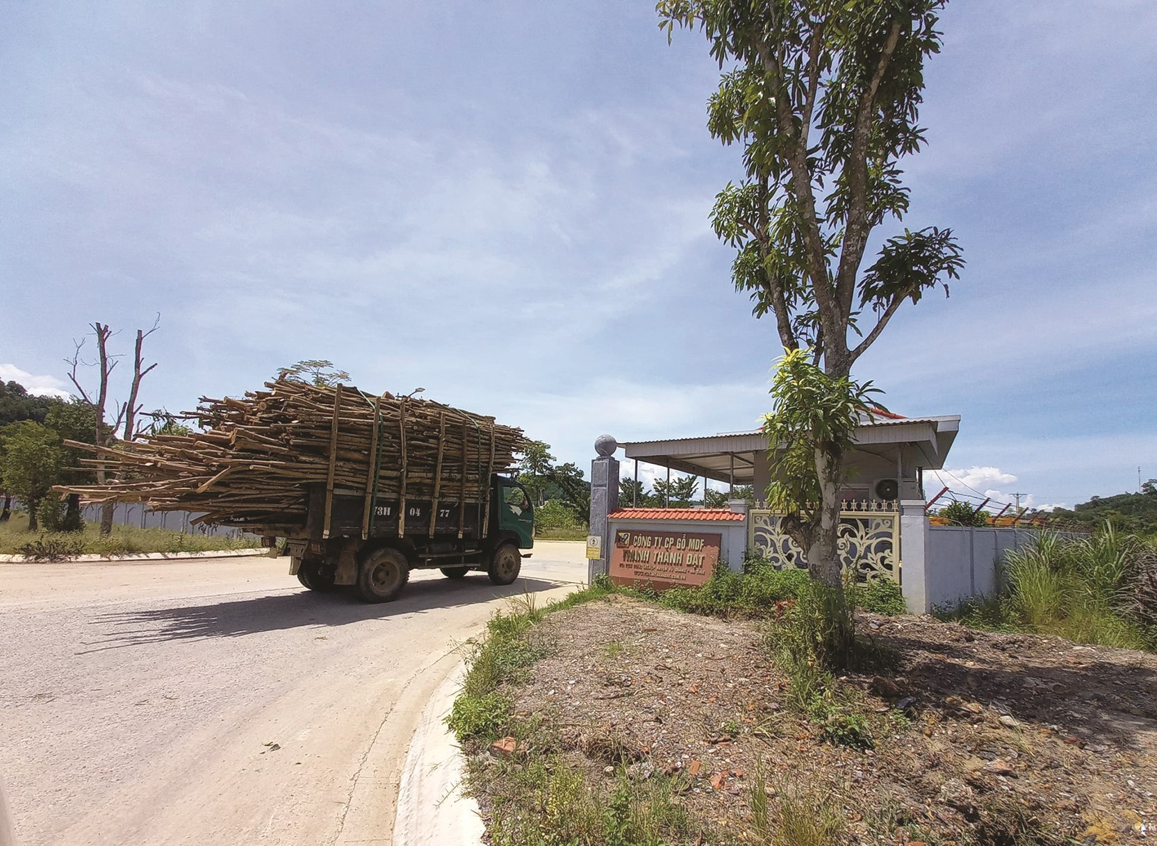 Công ty Cổ phần gỗ MDF Thanh Thành Đạt tại xóm 2, xã Thọ Điền, huyện Vũ Quang (Hà Tĩnh).