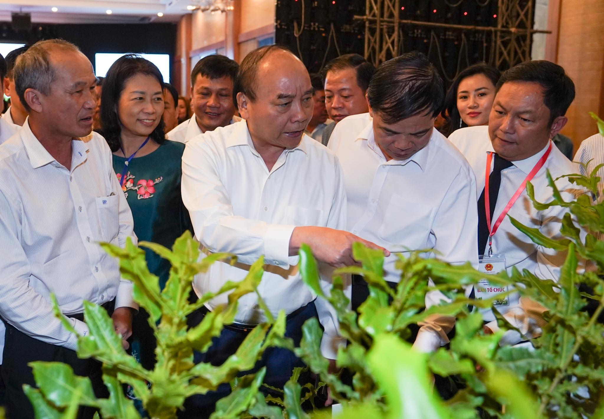 Thủ tướng Nguyễn Xuân Phúc thăm các gian hàng mắc ca tại Hội nghị