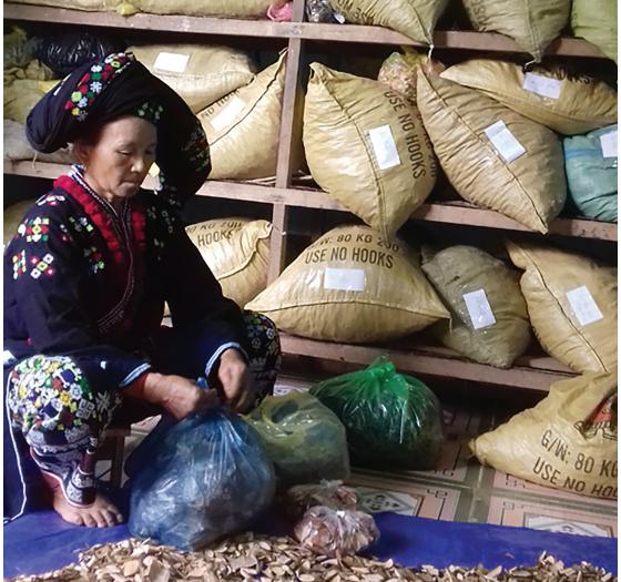 Chị Triệu Thị Lầu làm đủ việc để kiếm tiền cho con ăn học.