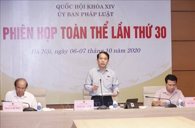 Chủ nhiệm Uỷ ban Pháp luật của Quốc hội Hoàng Thanh Tùng phát biểu. Ảnh: Doãn Tấn/TTXVN