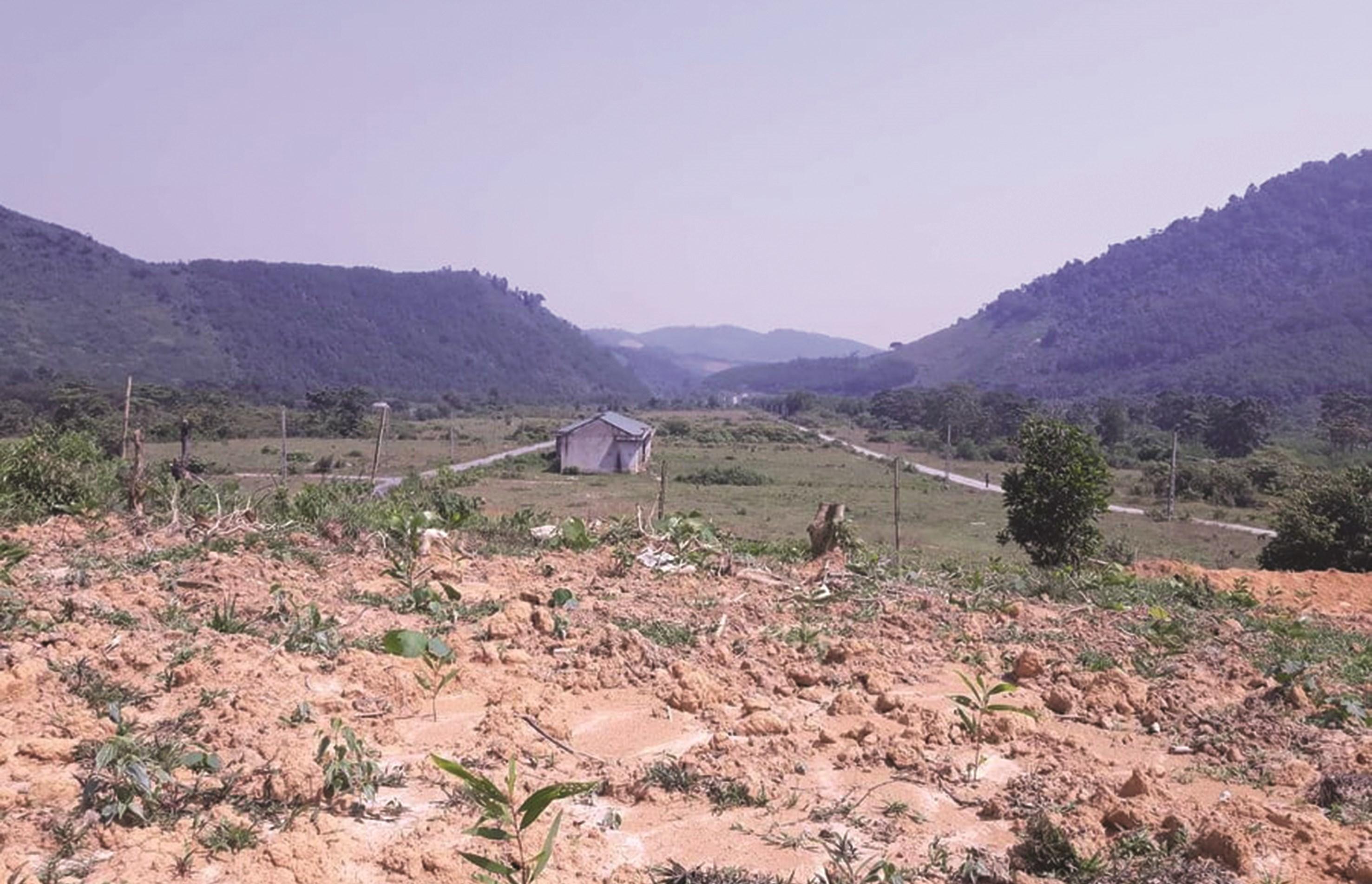 Một góc khu TĐC Khe Mừ xã Thanh Thủy, huyện Thanh Chương