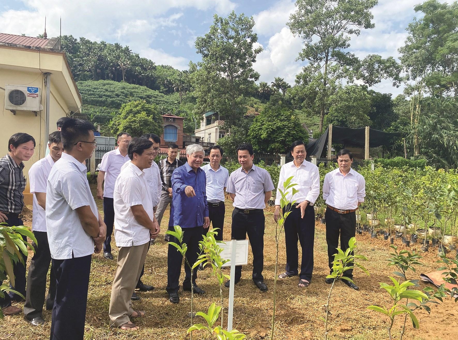 Bộ trưởng, Chủ nhiệm UBDT Đỗ Văn Chiến và lãnh đạo tỉnh Hà Giang thăm quan mô hình vườn ươm dược liệu tại huyện Vị Xuyên (Hà Giang).