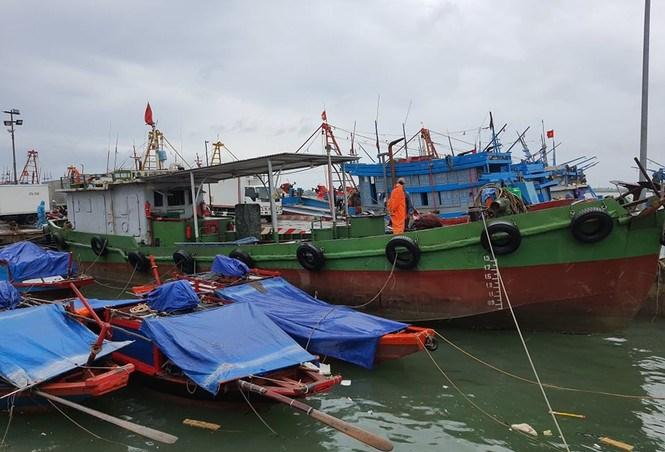 Ngư dân chằng néo tàu thuyền chống bão số 7