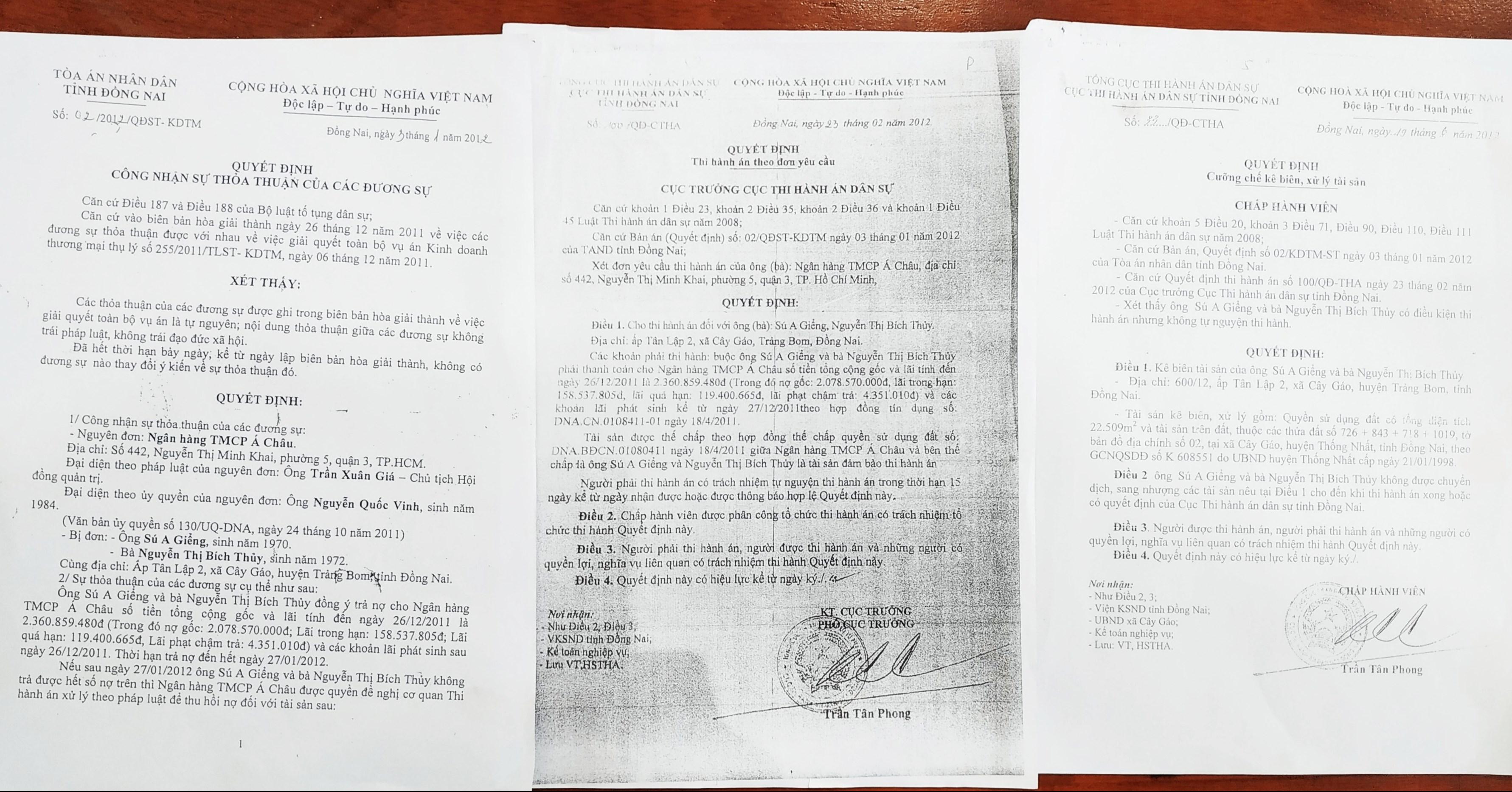 Các văn bản quyết định của TAND tỉnh Đồng Nai và Cục THADS tỉnh về vụ việc