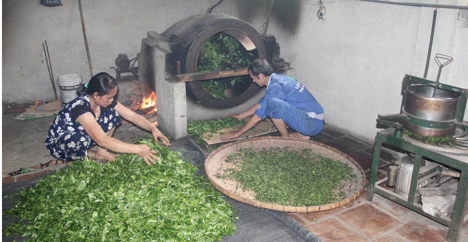 Sản phẩm chè Bình Sơn đã được công nhận sản phẩm đạt chuẩn OCOP chất lượng 3 sao.