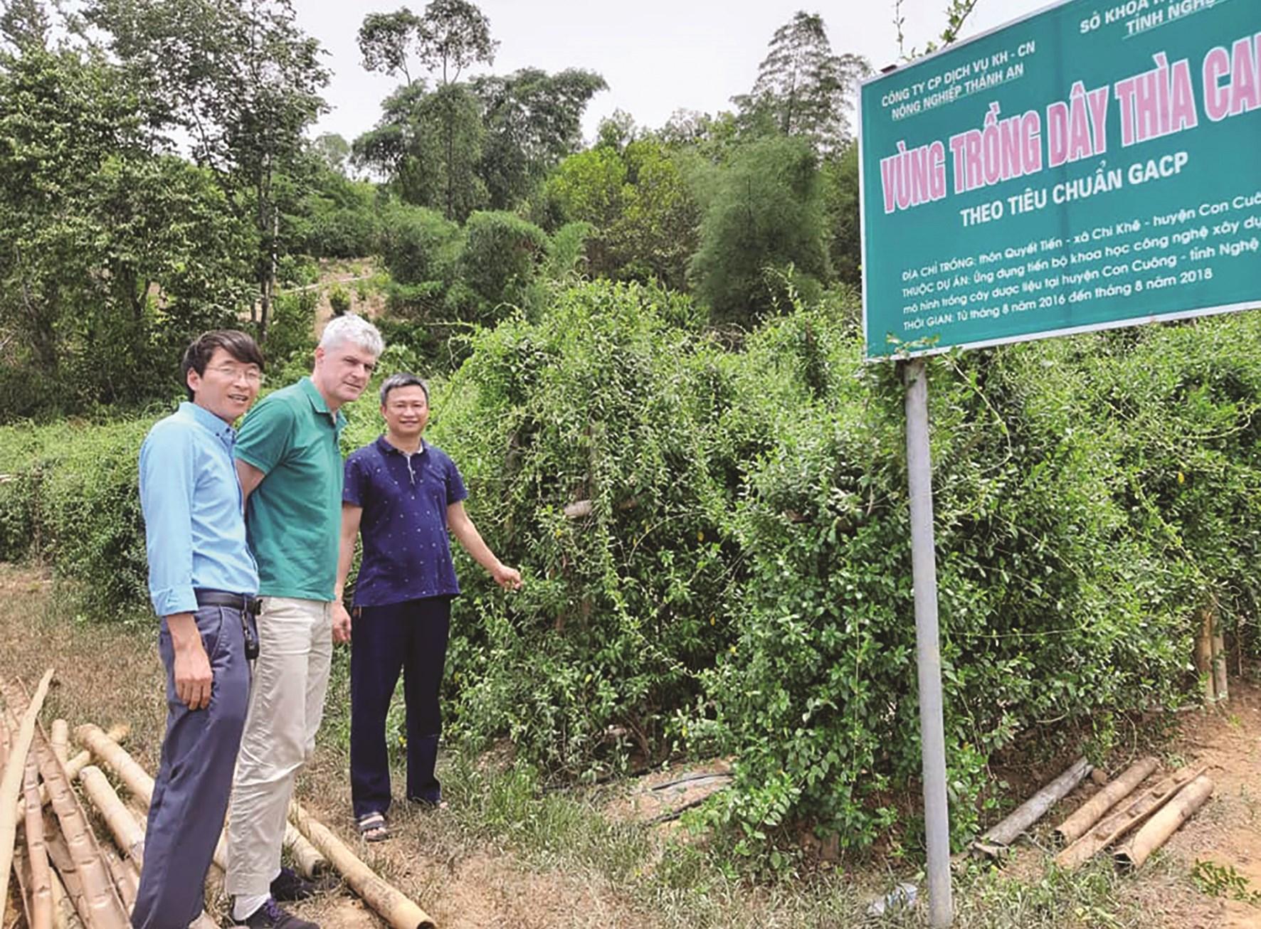 Giám đốc Phan Xuân Diện (áo đen) giới thiệu về cây dược liệu với chuyên gia nước ngoài.