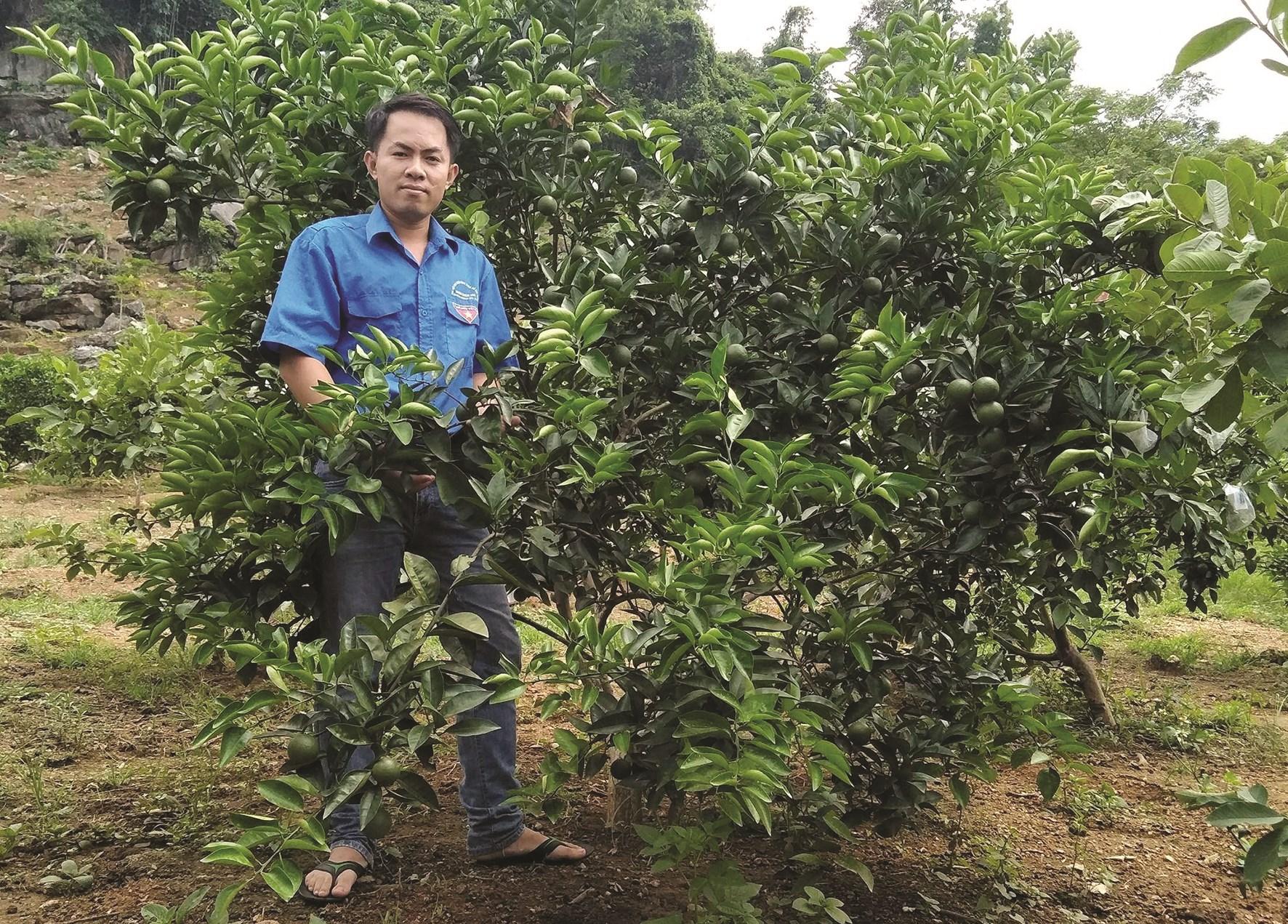 Anh Nguyễn Văn Giang, trong vườn cây của gia đình.